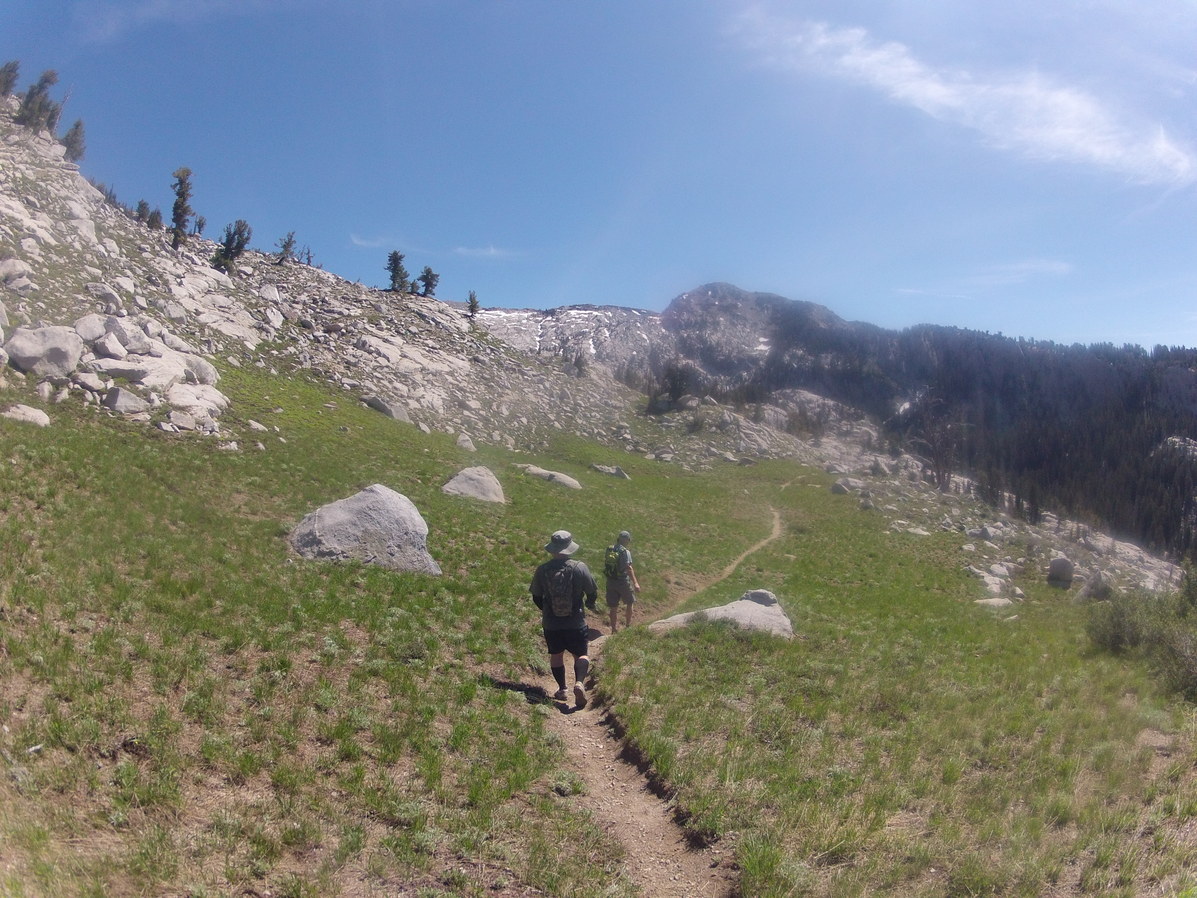 Cool meadow with Chipman in background